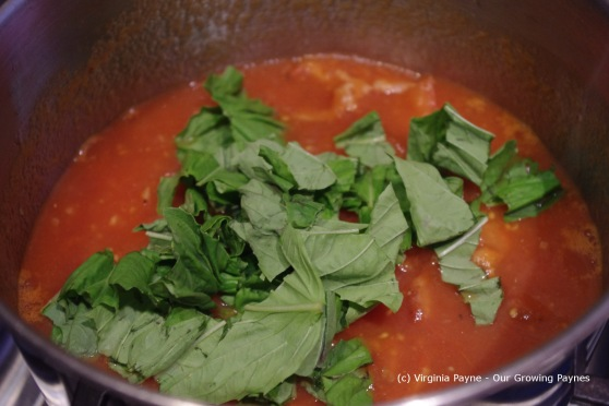 Tomato Soup 3 2013