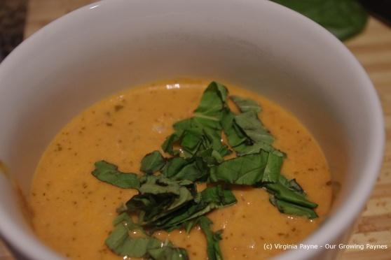 Tomato Soup 5 2013