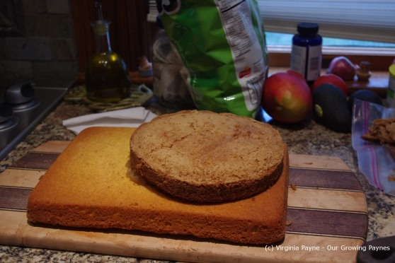 Castle cake 6 2013