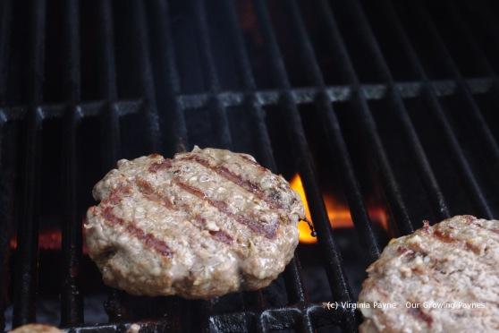 Cheddar cheeseburger 5 2013
