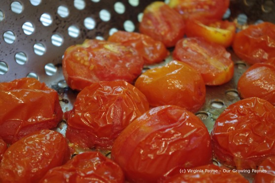 Fire roasted tomato sauce 4 2013