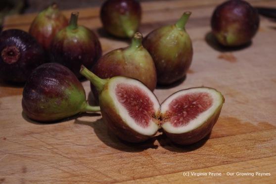 Fig crostini 1 2013