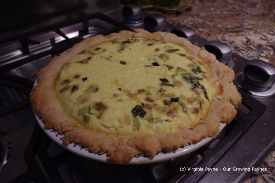 Goat and leek quiche 8 2013