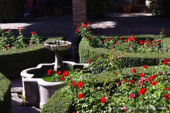 Malaga 5 2013