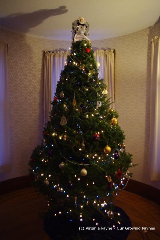Christmas 3 2013