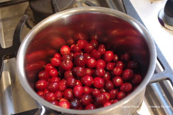 Cranberry apple sauce 1 2013