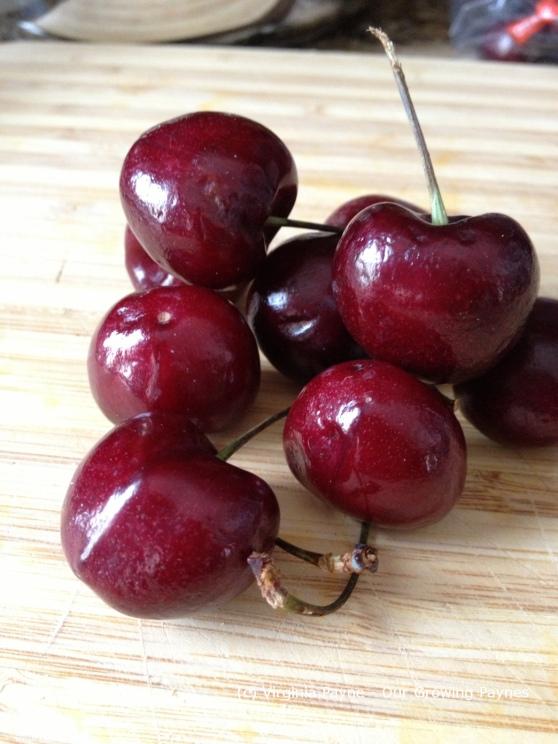 Cherry squares 1 2014