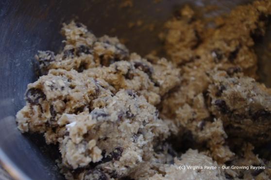 Oatmeal cookies 4 2013