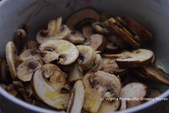 Mushroom tarragon soup 1 2014