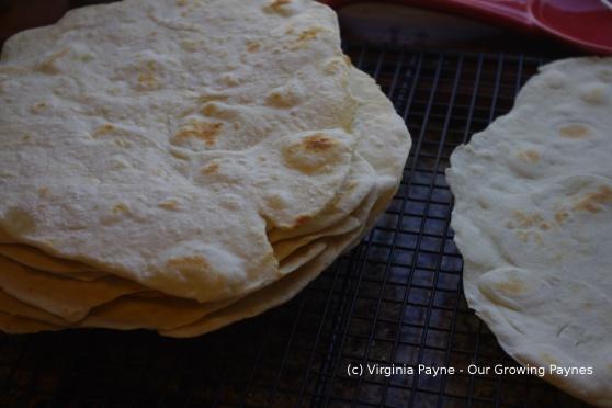 Tortillas 7 2014