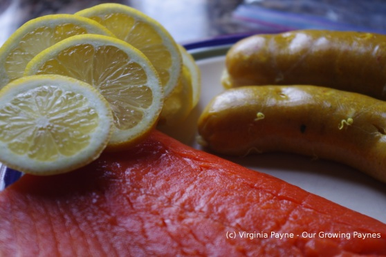 Grilled Salmon 1 2014