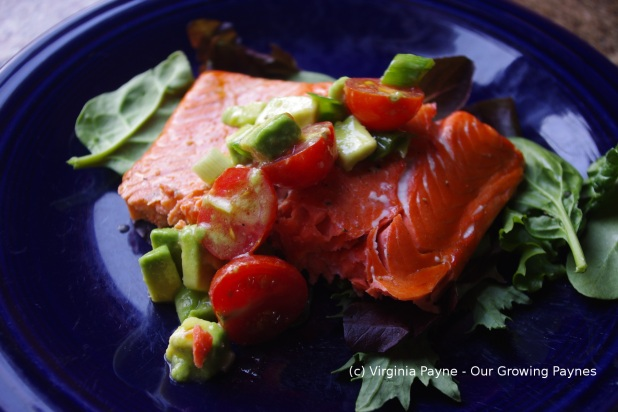 Grilled salmon 7 2014