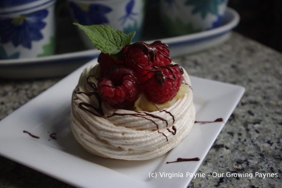Raspberry meringue nests 14 2014