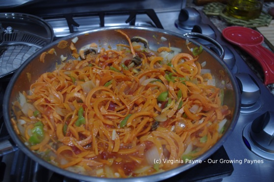 Sweet potato pasta 5 2014