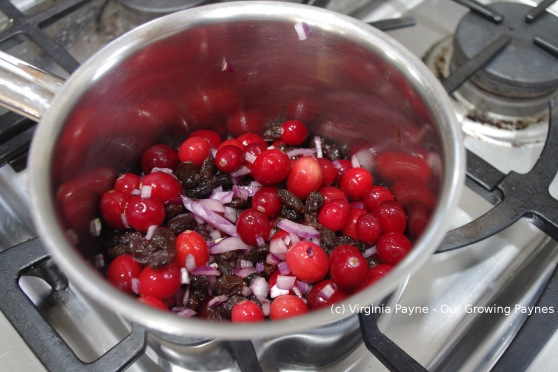 Cranberry Raisin Sauce 4 2014
