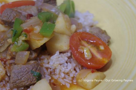 Lamb curry 4 2014