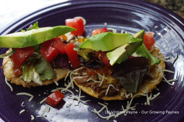 Tostadas by Our Growing Paynes