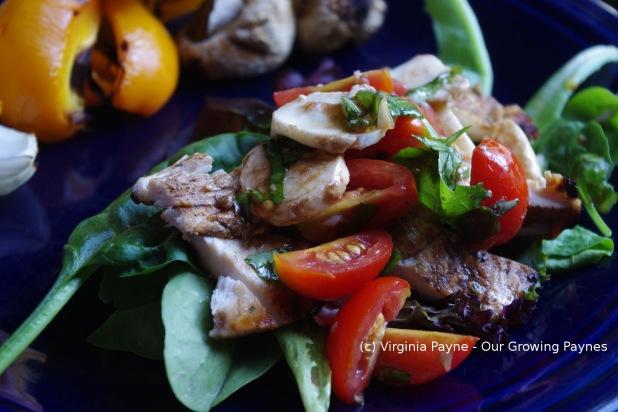 Bruschetta chicken salad 4 2015