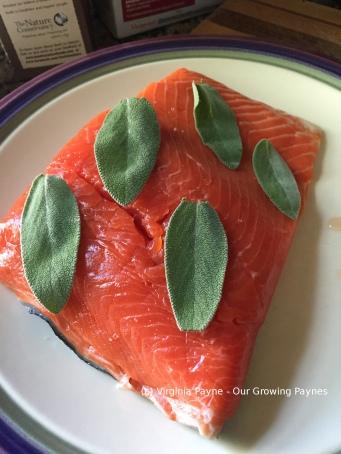 Cedar grilled salmon 3 2015