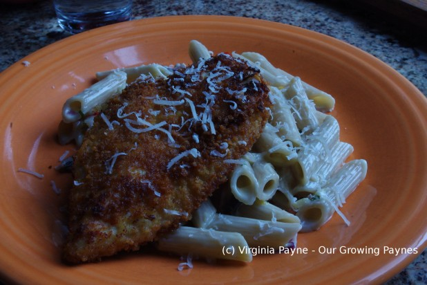Gorgonzola chicken 6 2015