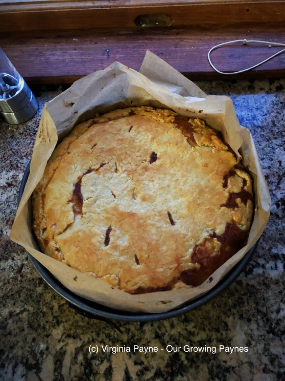 Cheese and onion pie 11 2018