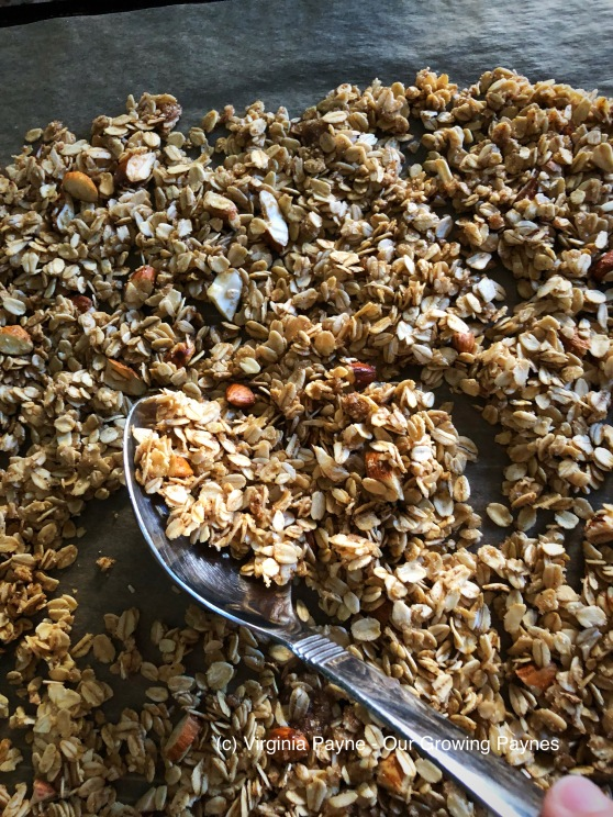 Homemade granola 4 2018